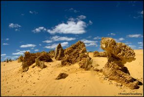Old Pinnacles Desert by partoftime