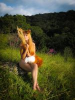 Horo cosplay from Spice and Wolf by MishiroMirage