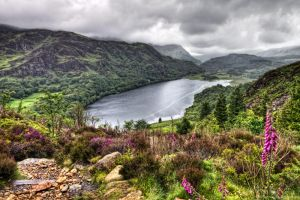 Llyn Dinas 7 by CharmingPhotography