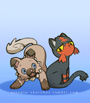Pokemon: Dog and Cat by OOT-Link