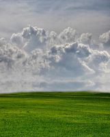 Premade Background Stock 142 by FairieGoodMother