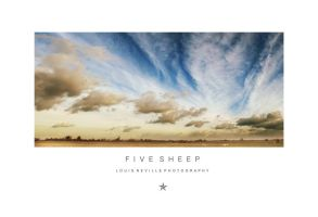 :::FIVE SHEEP::: by SevenHeptagons