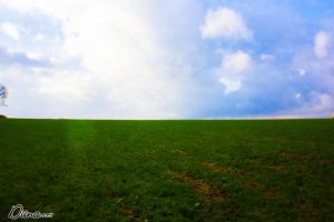 Field with Fisheye by Diinax3