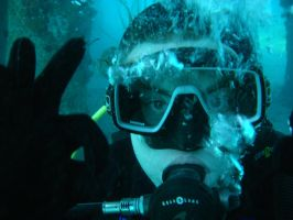 I m the diver by enselb