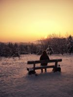 Cold bench by golldie