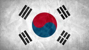 South Korea Grunge Flag by SyNDiKaTa-NP