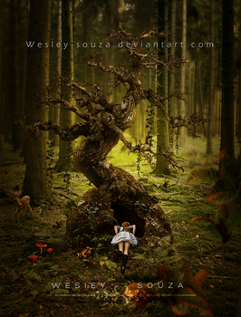 Comes Alice to the Wonderland - New Collection by Wesley-Souza