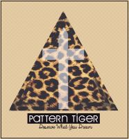 Pattern Tiger by DeserveWhatYouDream