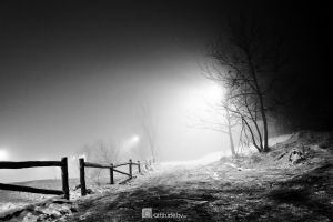 Thick fog 1 by attilakel