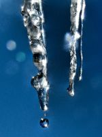 Melting Icicles in the Sun by papatheo