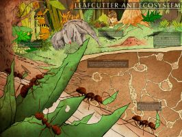 Leaf-cutter Ants by iKaash