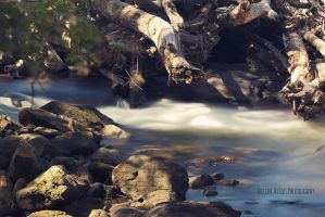Long Exposure 1 by OneOfLifesMysteries