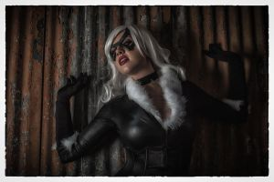 Black Cat by CallieCosplay