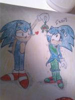 Sonic and Sonica by SonicaSpeed