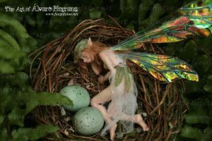 Fairy girl sleeping in a nest by AlvaroFuegoFatuo