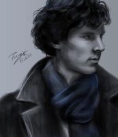 The Consulting Detective by Leafbreeze7