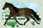 CF Kaleo by JNFerrigno