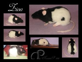 Custom Rat Plushie - Ziva by Morumoto