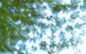 Abstract Leaves Wallpaper 02 by SnapShot120
