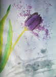 Tulip Painting by Thediamondintherough