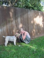 Featuring Fox Terrier by Neriah-stock