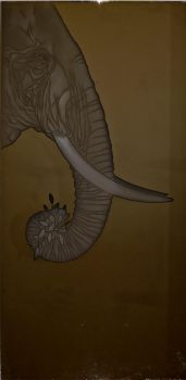 African Elephant Head Etched Glass Bronze Mirror by ImaginedGlass