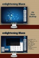 Bluez - my 3rd 'enlightening' screenshot by rvc-2011