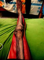 My Leg + BIC pen by naldojunio