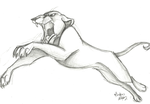 lioness leap-sketch by Stray-Sketches