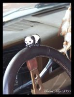 Toki learns to drive by Famous-Panda