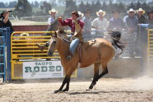 Taupo Rodeo 152 by Sooty-Bunnie