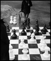 Chess masters by kelemenis