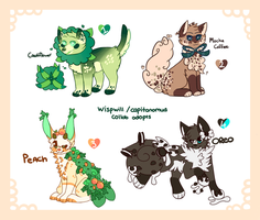 Food themed adopts by CapitanoMud