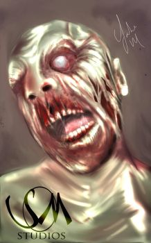 zombie by snmstudios1