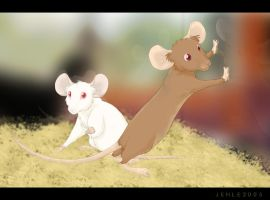 Mice by derangedpotato