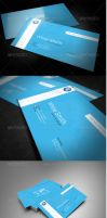 Global Business Card by UnicoDesign