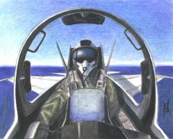 FA-18 US NAVY combat pilot by VyToR