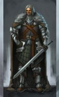 westmen armor concept 3 by wanderer-arts