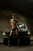 mustang sally by creativephotoworks