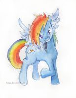Rainbow Dash by Tirass