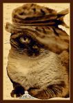 cat in the hat..sepia.. by miapicassa