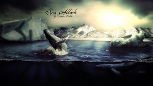 Sea Attack by Sdsurfrs