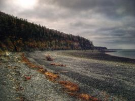 Halls Harbour Beach in December by ShawnaMac