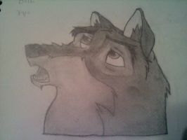 Balto 1st try by Chidori1334