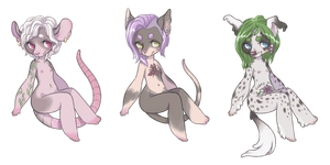 Hairless adoptables (NO.3 STILL OPEN) by space-rat