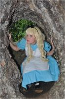 Alice in WonderLand - Entering the rabbits hole by TenchiMuyou