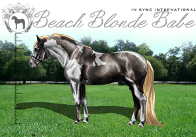 ISI Beach Blonde Babe by Decorum100