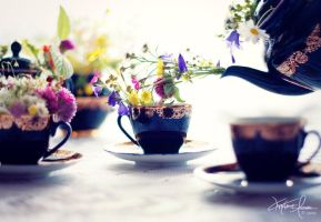 . : tea party for fairies : . by Korpinkynsi