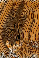 Too Much Fog In The Heart by CristianoTeofili