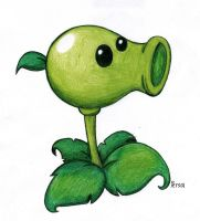 Plants vs Zombies _ Peashooter by SpongePersa